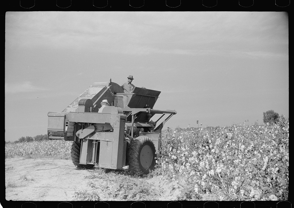 Rust Cotton Picker
